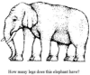 elephant illusion