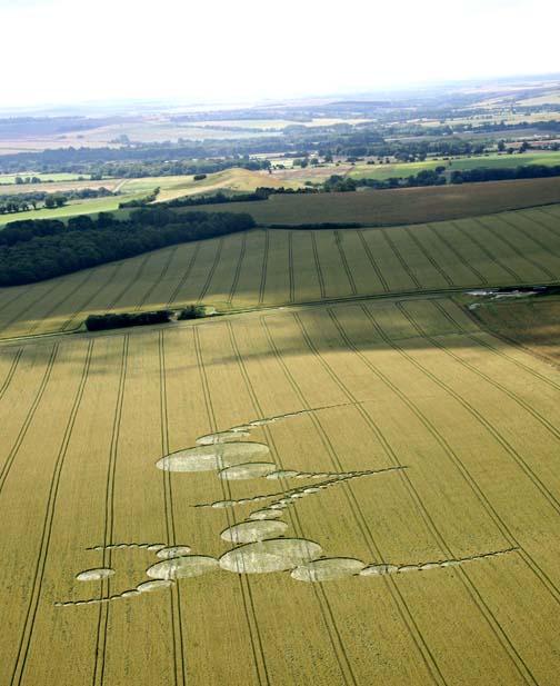 July 7th, 2007-East Field, Alton Priors, Wiltshire, U. K.