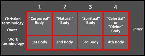 bodies 4