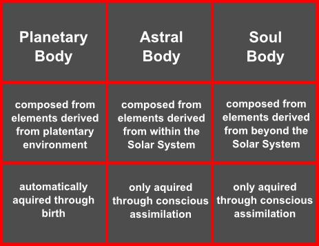 bodies of man2