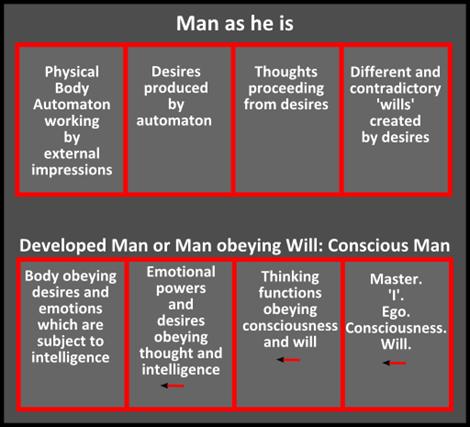 bodies of man33